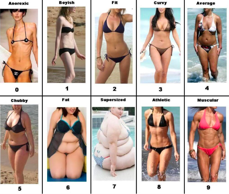 female body shape types