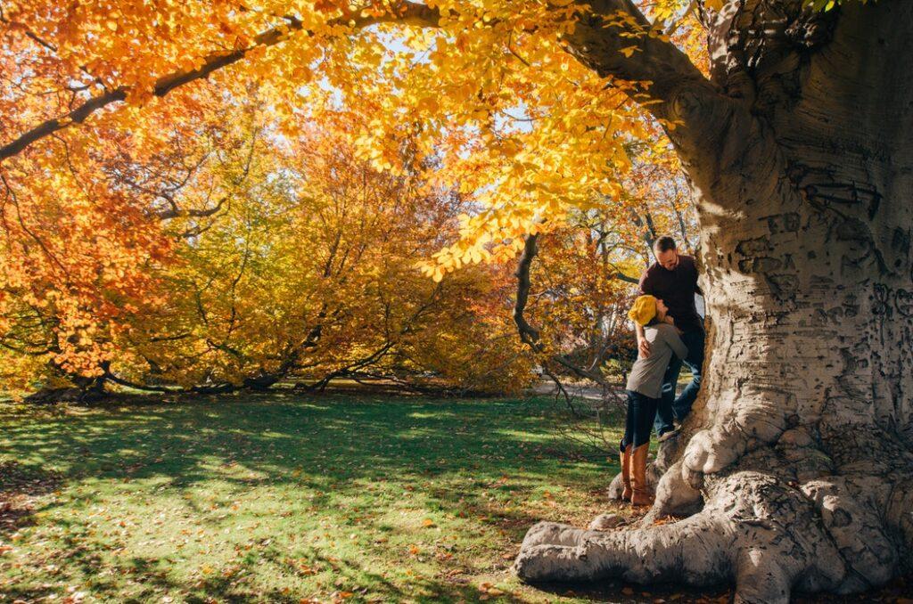 Autumn couple Outdoors climbing yellow tree